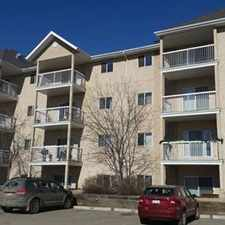 Rental info for Edmonton Bachelor Suite for rent in the Clareview Business Park area