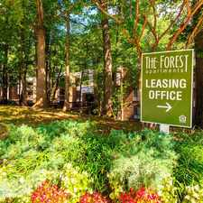 Rental info for The Forest