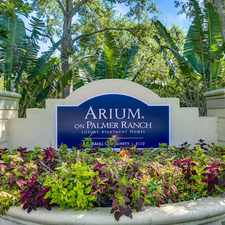 Rental info for ARIUM on Palmer Ranch
