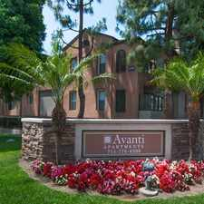 Rental info for Avanti in the Anaheim area