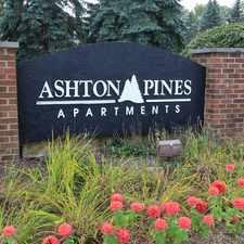 Rental info for Ashton Pines