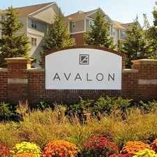 Rental info for Avalon Station 250