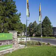 Rental info for Aurora Hills in the Highline Villages area
