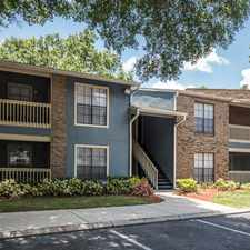 Rental info for The Avana in the Carrollwood area
