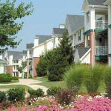 Rental info for The Point At McNair Farms