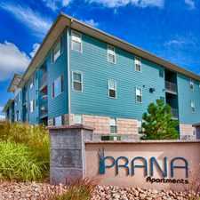 Rental info for Prana