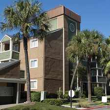 Rental info for Palms on Westheimer
