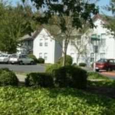 Rental info for Apartment for rent in Bellingham $940. Cat OK!