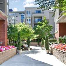 Rental info for AMLI at Bellevue Park