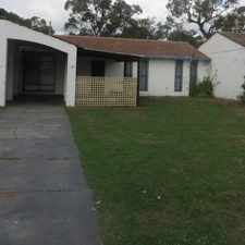 Rental info for FRESHLY PAINTED SUPER VILLA in the Orelia area