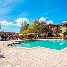 Rental info for Sabal Palm Apartments in the Northdale area