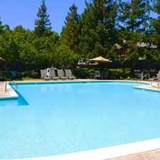 Rental info for Avana Almaden in the Blossom Valley area