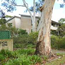 Rental info for **Application Approved and Holding Deposit Received ** in the Turramurra area