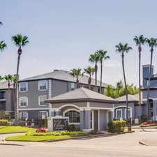 Rental info for Palms at Clearlake