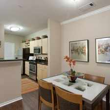 Rental info for 8800 Brodie Lane
