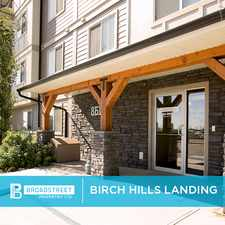 Rental info for Birch Hills Landing