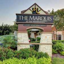 Rental info for Marquis at the Woodlands