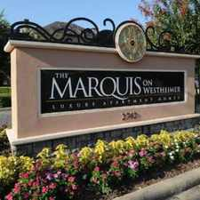 Rental info for Marquis on Westheimer