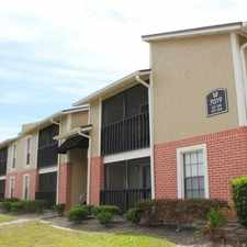 Rental info for The Avenue in the Tampa area