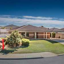 Rental info for Quinns Cracker in the Perth area