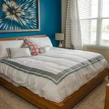 Rental info for Springs at Round Rock