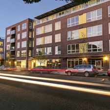 Rental info for Springline in the Seattle area