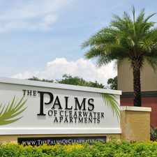 Rental info for Palms of Clearwater