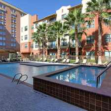 Rental info for Marquis Lofts At Hermann Park