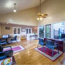 Rental info for Braeswood Oaks in the 77035 area