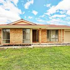 Rental info for Best on Show in the Perth area