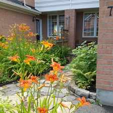 Rental info for Scout St in the Ottawa area