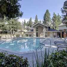 Rental info for Condo, 677 Sq. Ft. - Come And See This One. in the Sierramont area