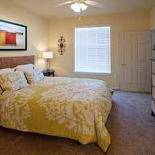 Rental info for Springs At Live Oak in the Universal City area