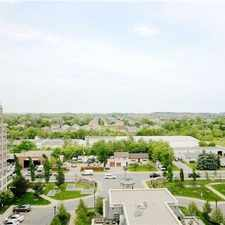 Rental info for 330 Red Maple Road #1006