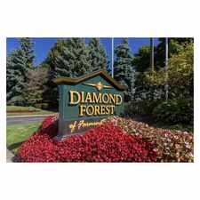 Rental info for Diamond Forest