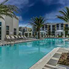 Rental info for 1/1 BRAND NEW, LUXURY, NEVER LIVED IN! EASY MOVE IN, $1515 and 6 weeks free rent.561-860-1084 in the Boynton Beach area