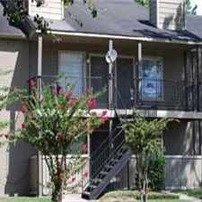 Rental info for Sago Palms in the Houston area