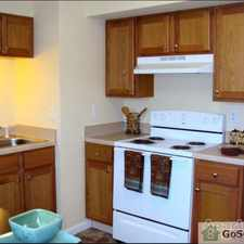Rental info for Nice 2 Bedroom with Spacious Kitchen & New Carpet! See Specials Below! in the Musgrave area