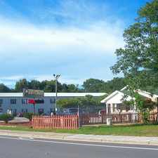 Rental info for Willow Tree