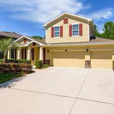 Rental info for 2987 Calvano Drive in the Land O' Lakes area