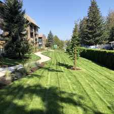 Rental info for Cedar Green Apartments in the Abbotsford area