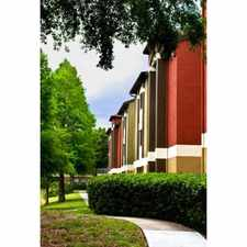 Rental info for Sabal Palm at Carrollwood Place