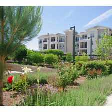 Rental info for The Groves at Dublin Ranch Senior
