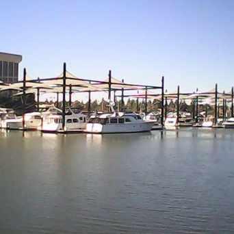 Photo of Stockton Downtown Marina in Civic Center, Stockton