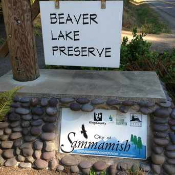 Photo of Beaver Lake Preserve in Sammamish