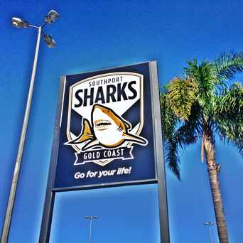 Photo of Southport Sharks in Gold Coast