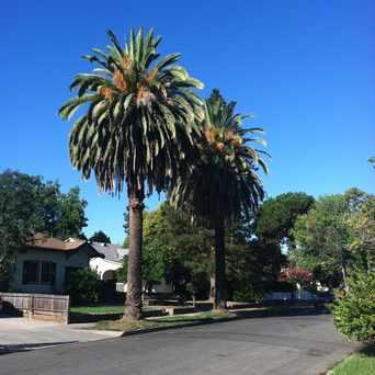 Photo of STOCKTON BLVD & 11TH AVE (SB) in Central Oak Park, Sacramento
