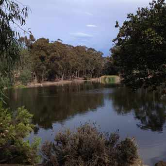 Photo of Evan's Pond in Scripps Ranch, San Diego