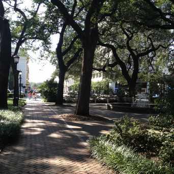 Photo of Johnson Square in Savannah