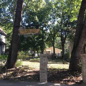 Photo of Bad Seed Community Garden in Ventura Village, Minneapolis